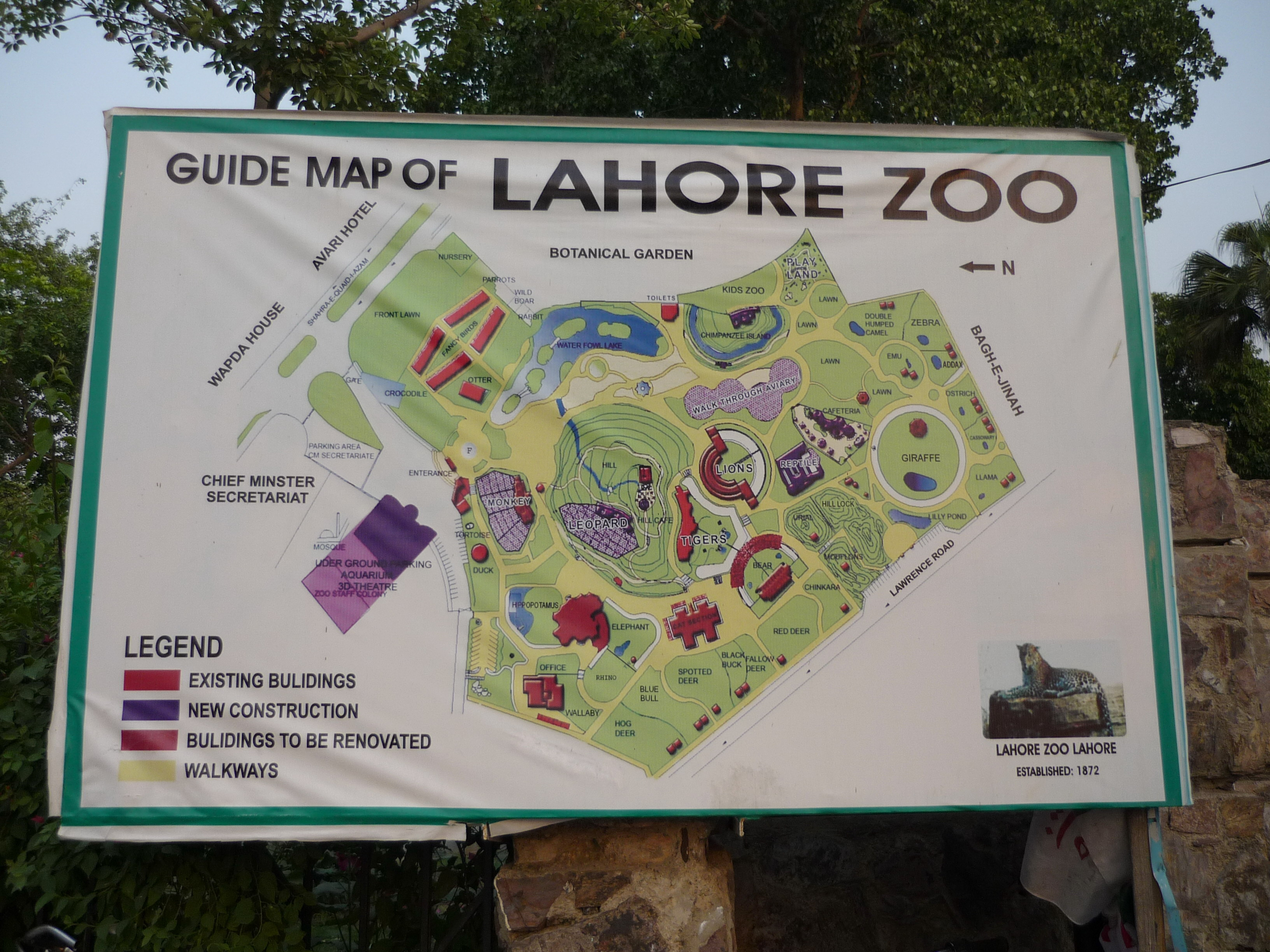 lahore zoo Lahore: an eight-year-old bengali tigress died at lahore zoo on tuesday the bengali tigress was born at bahawalpur zoo and brought to the lahore zoo in 2014, a zoo spokesperson told geotv the eight-year-old tigress was suffering from a parasitic disease, the spokesperson added her body has.