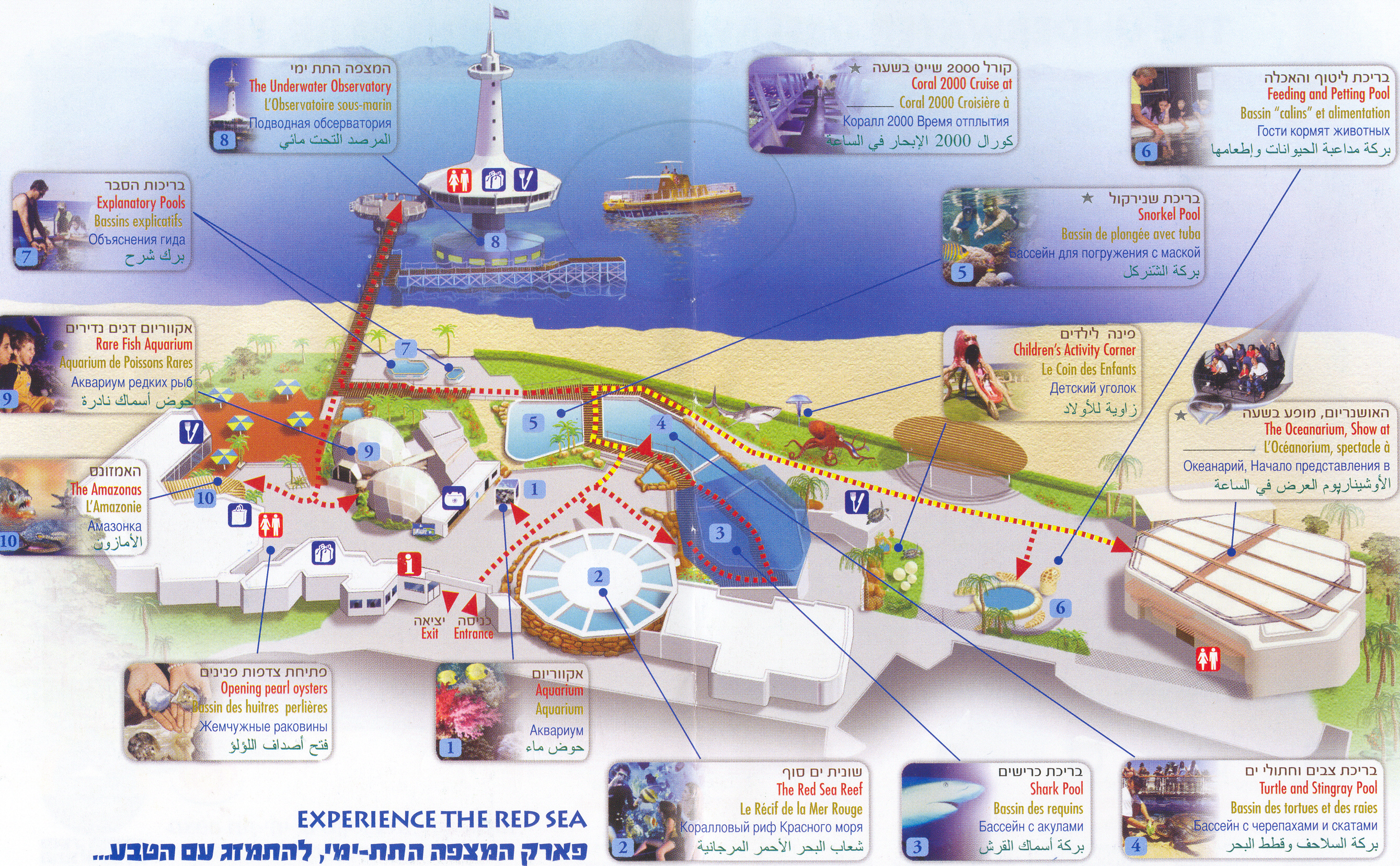 Zoos Eilat