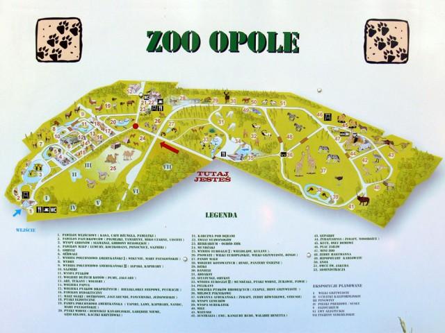 Zoos Opole