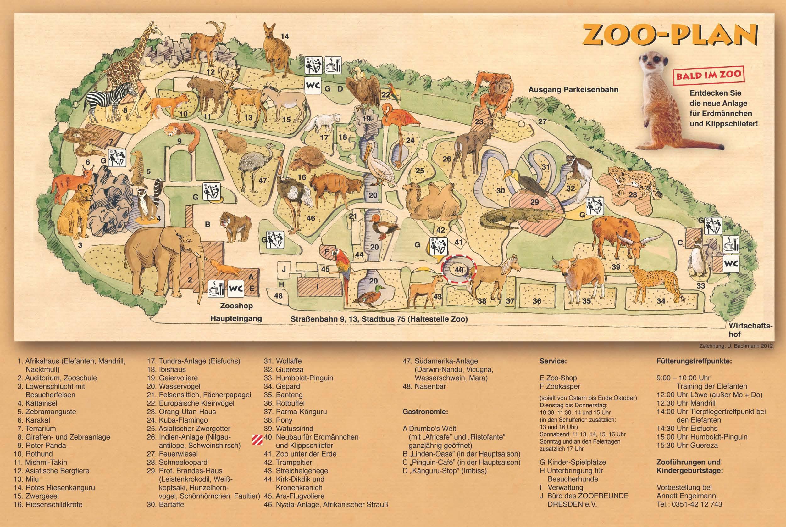Zoos Dresden