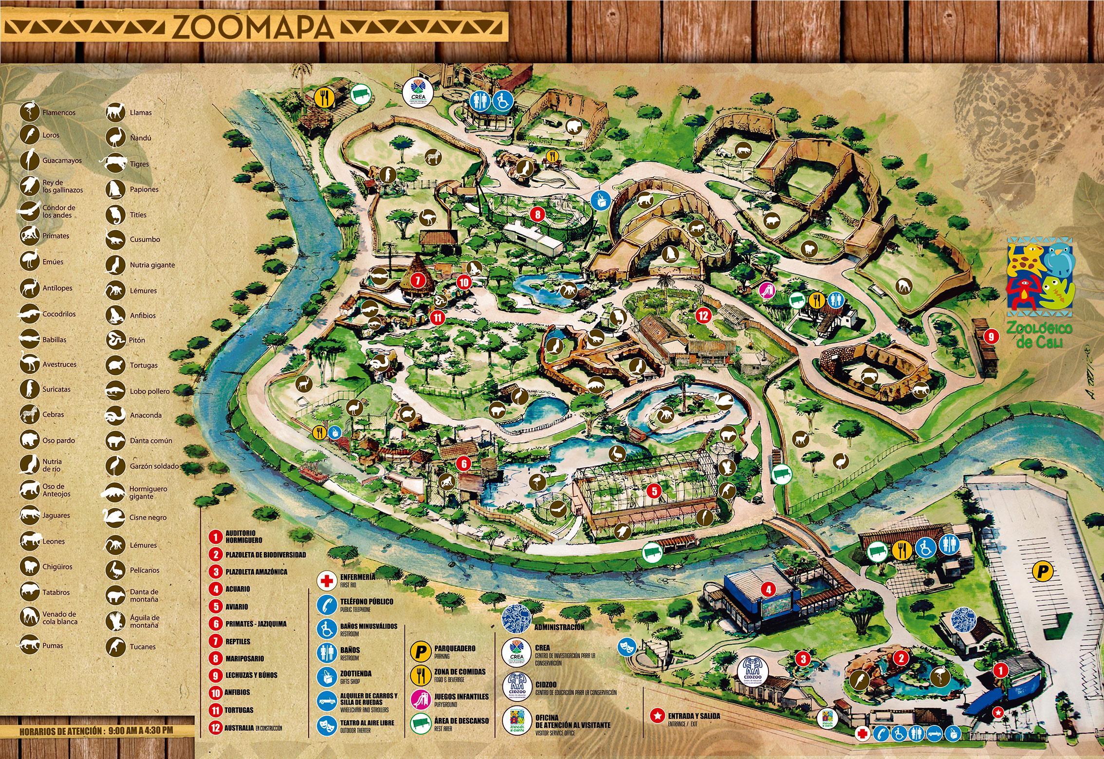 Cali zoo cali zoologico publicscrutiny Image collections