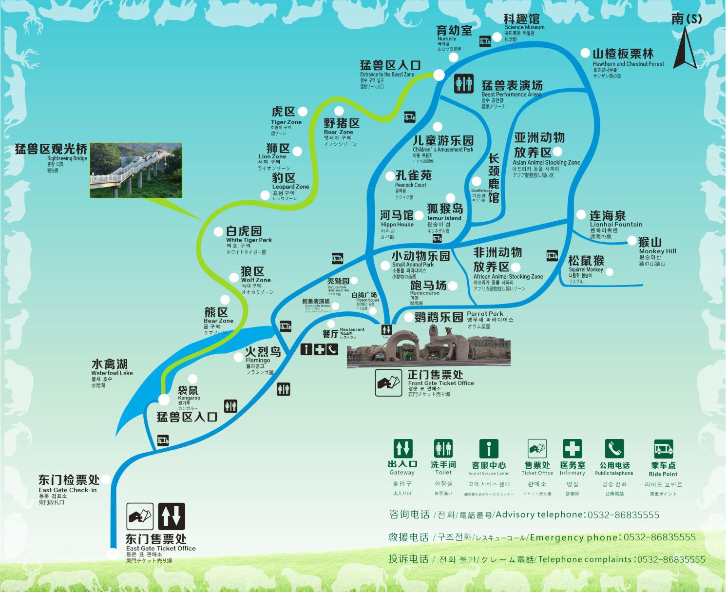 Zoos Qingdao Zoo